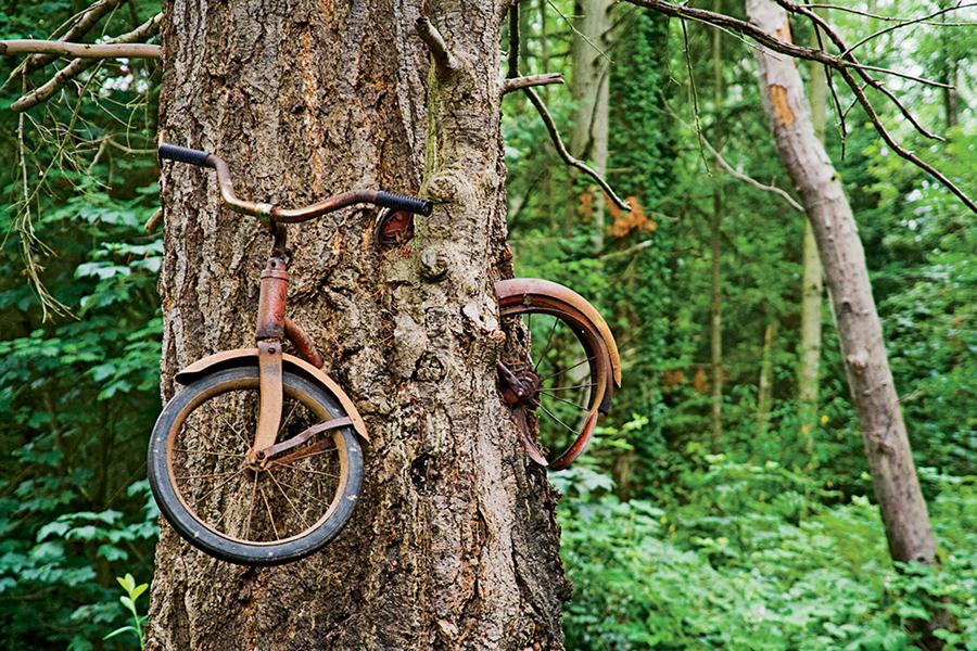 Photo Friday Peak Cycles Bikeparts Com Blog