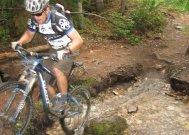 www.bikeparts.com