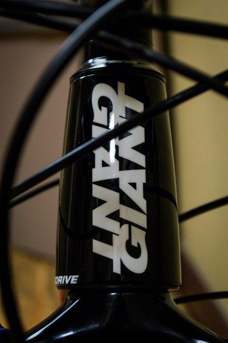 2013 Giant Anthem X 29 Adv DEMO-20