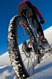 Fatbikes at BikeParts.com